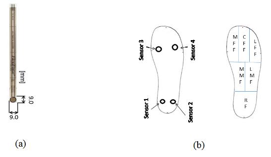 Figure 6 . (a) Piezoresistive Sensor  (b) In-sole sensors distribution (Measurement Position).