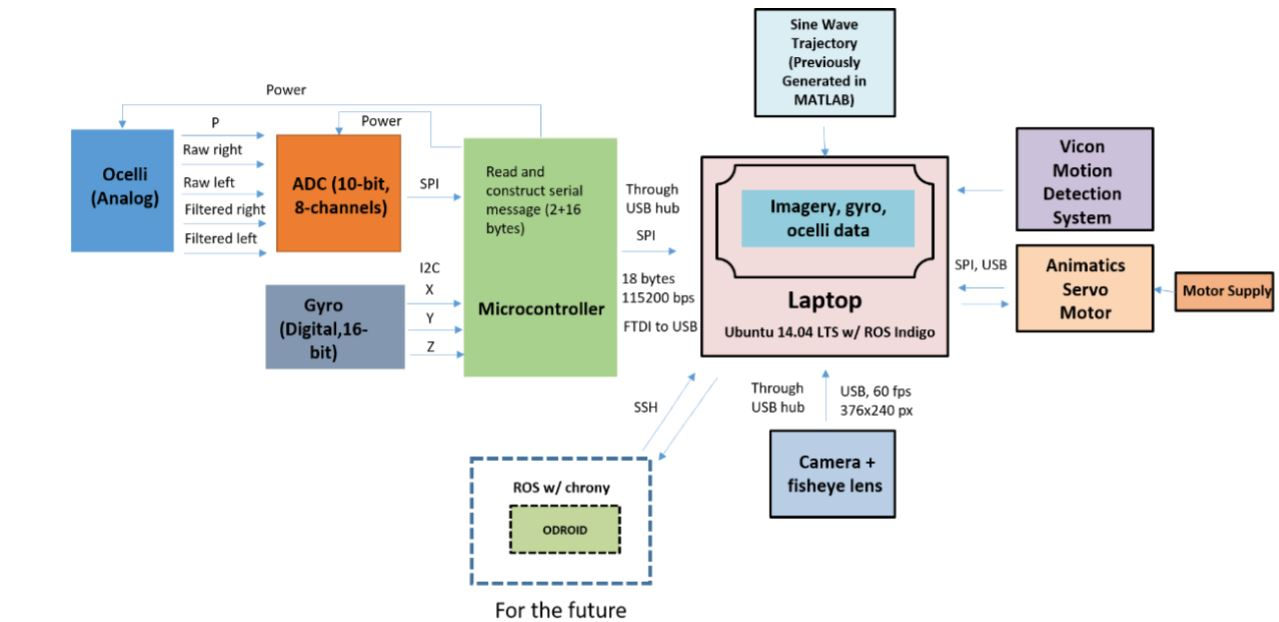 Figure 20: System block diagram: All the data collected is stored in laptop