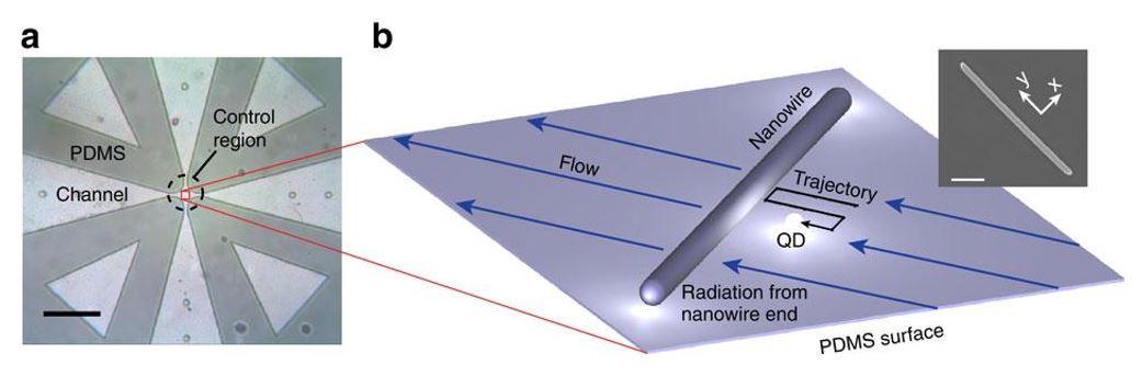 Fig. 23 Near-field probing with a single QD