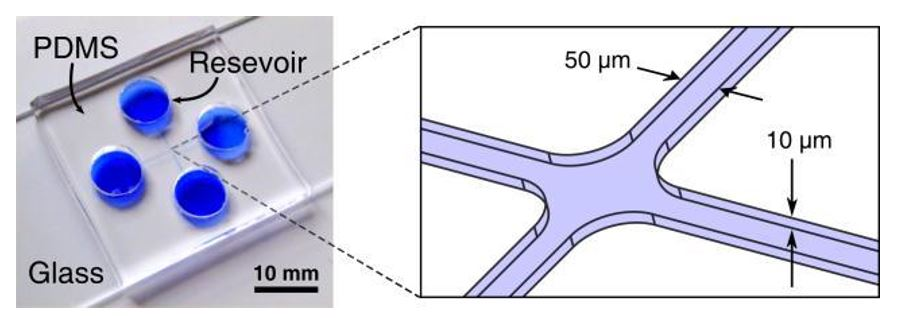 Fig. 4 Microfluidic control device for one object