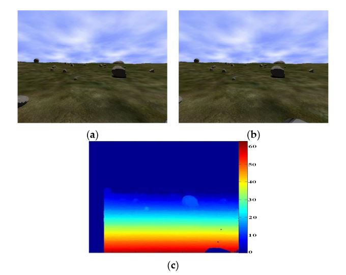 Figure 4. (a, b) Synthetic stereo images obtained from the simulated environment