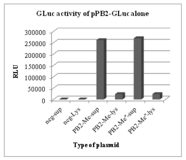 Figure 5.1: GLuc activity of pHW-PB2-GLuc alone. The supernatant and cell lysate from negative control
