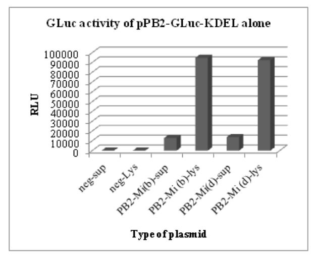 Figure 5.2: GLuc activity of pHW-PB2-GLuc-KDEL alone. The cell lysate and supernatant from negative control