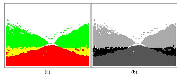 Figure 3. Classification image in color and gray scale representations
